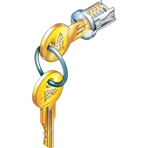 Compx C500LP-KD-3 Timberline Lock Plug Polished Brass